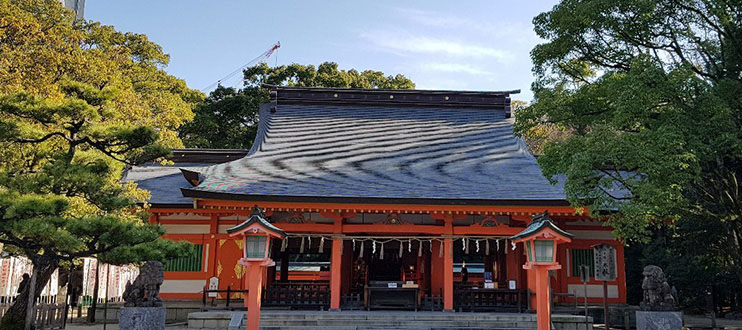 Tour of Shrines and Temples